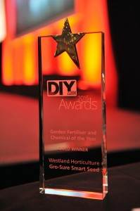 DIY_Week_Awards_2015_trophy1